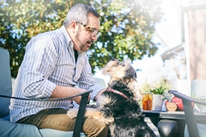 Schnauzer stands to man's lap sitting at a patio table outdoors