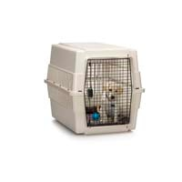 Yellow Labrador puppy in a kennel/cage